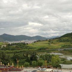 SongZan LinSi ZangBao ZhanLanGuan User Photo