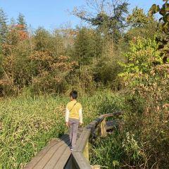 해피월드 생태공원 여행 사진