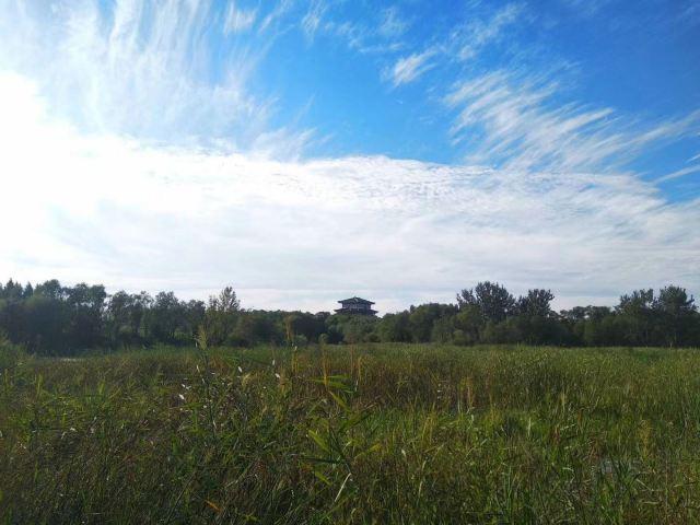 Bailang Oasis Wetland Park