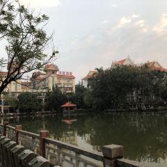 孔雀湖用戶圖片