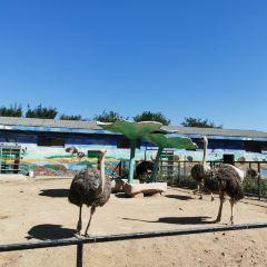 Tangshan Zoo User Photo