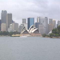 雪梨港用戶圖片