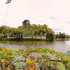 Daguan Park User Photo