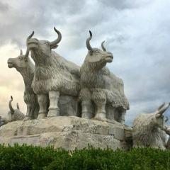 犛牛廣場用戶圖片