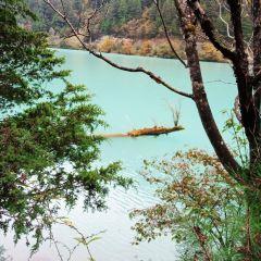 Shuzhenggou Valley User Photo