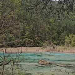 蘆葦海用戶圖片
