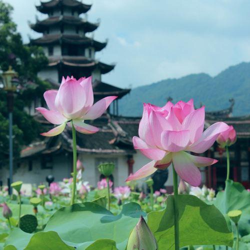 Xipi Temple of the Queen of Heaven