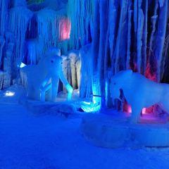 Dragon Palace Wonderland User Photo