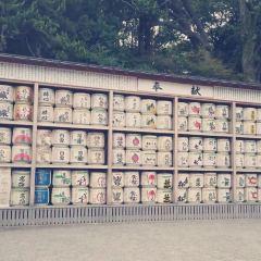 鶴岡八幡宮張用戶圖片