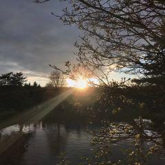 Sadie Seymour Botanical Gardens用戶圖片