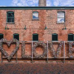 古釀酒廠區用戶圖片