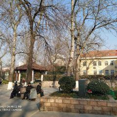 文化公園(青島市海泊河公園)用戶圖片