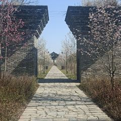 광푸린 교외 공원 여행 사진