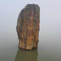 莫愁湖用戶圖片