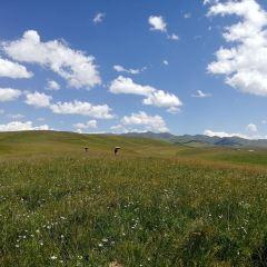 Sangke Grassland User Photo