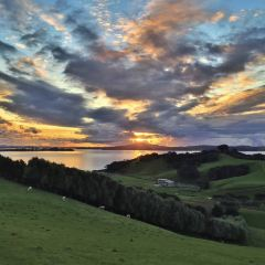 Waiheke Island User Photo