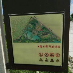 룽펑습지 여행 사진