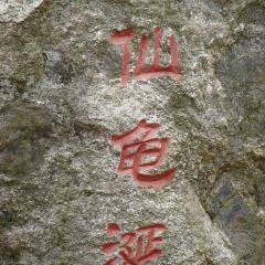 龜峰山用戶圖片