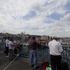 加拉塔大橋用戶圖片