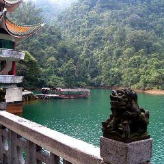 Dinghu Mountain User Photo