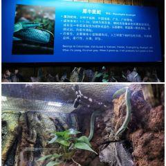 Changsha Sea World User Photo