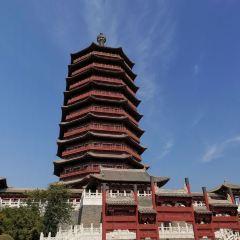 北京園博園用戶圖片
