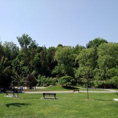 愛德華公園用戶圖片