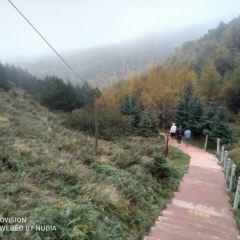 Huoshizhaiguojiadizhi (senlin)  Park User Photo