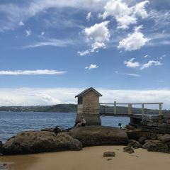 South Head and Watsons Bay Walk User Photo