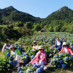 쿤위산 타이보딩 여행 사진
