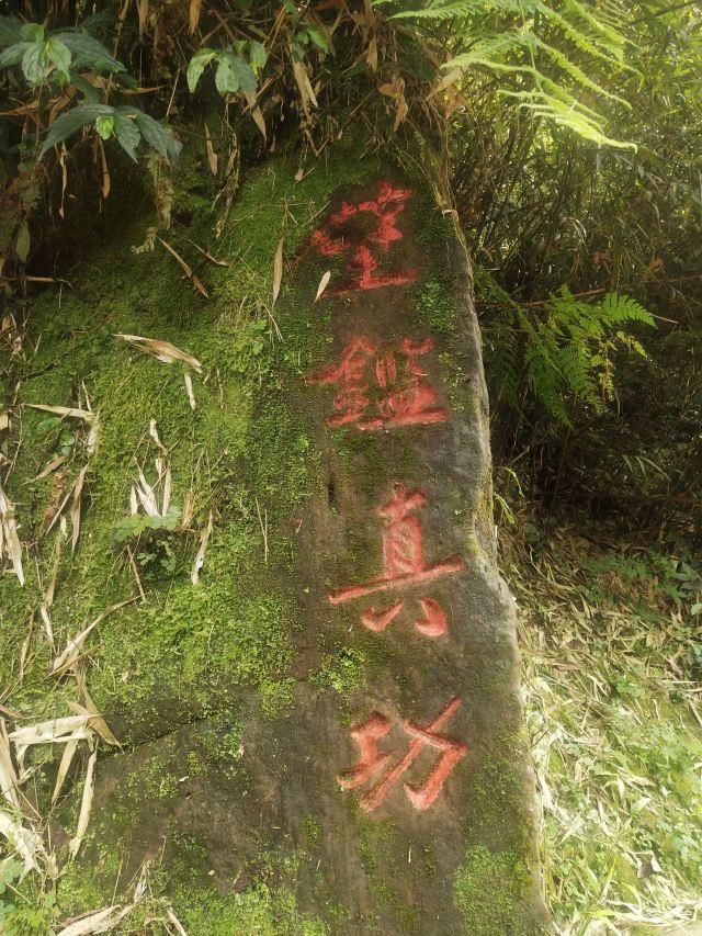 Bifengxia Giant Panda Base