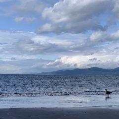 Wreck Beach User Photo
