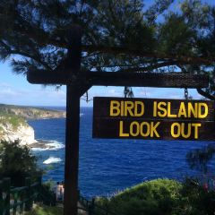 Bird Island User Photo