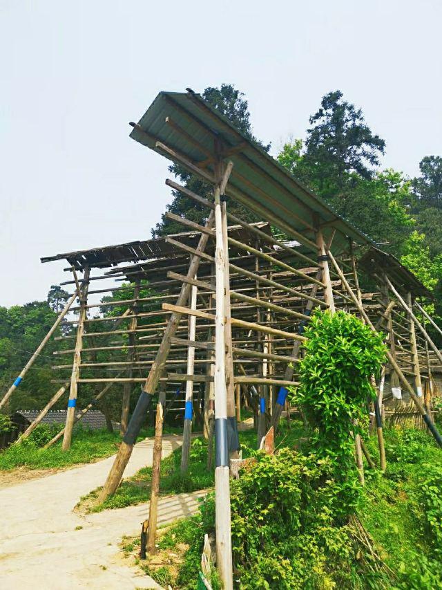 Basha Miao Nationality Village