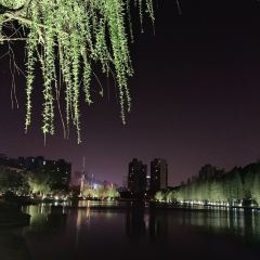 Lugu Park User Photo