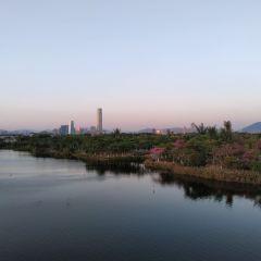 廈門園林博覽苑用戶圖片