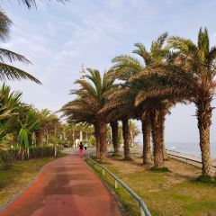 Haidian Island User Photo