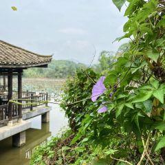 Laomumian Artisan Park User Photo