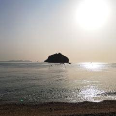 棒棰島用戶圖片