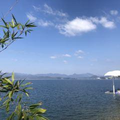 千島湖自然博物館千島湖自然博物館用戶圖片