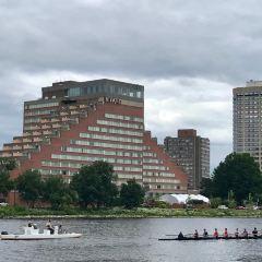 波士頓圖書館用戶圖片