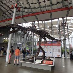 加州科學博物館用戶圖片