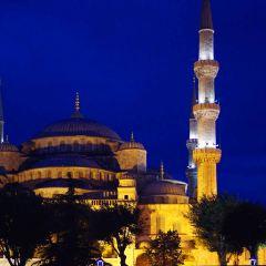 藍色清真寺用戶圖片