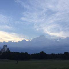 Piedmont Park User Photo