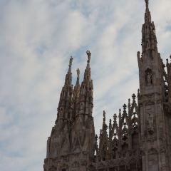Excelsior Milano User Photo