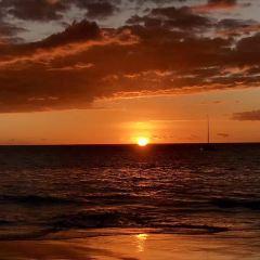 威基基海灘漫步用戶圖片