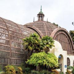 San Diego Balboa Park User Photo