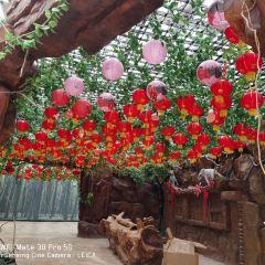 桂林洋國家熱帶農業公園用戶圖片