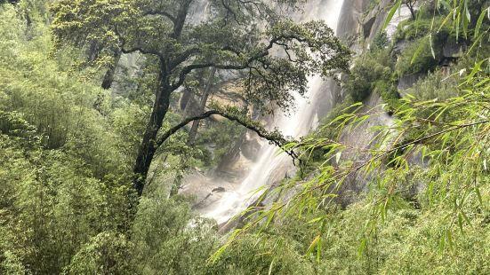 景区距离林芝市区约二十公里,是一个山水秀美的景区。主要是看一