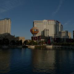 Las Vegas Strip User Photo
